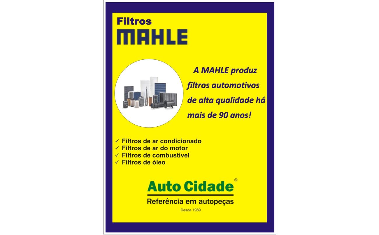 Filtros Mahle
